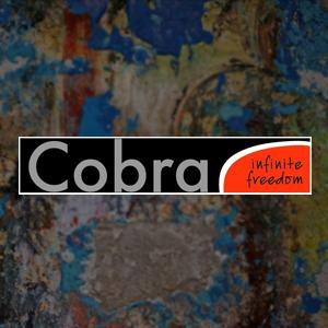 Brico+ | Óleos Cobra